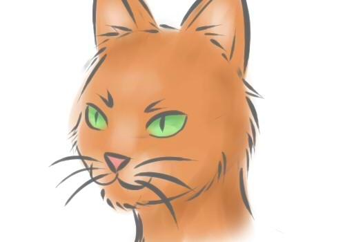 Як намалювати кішку? Малюємо кішку поетапно