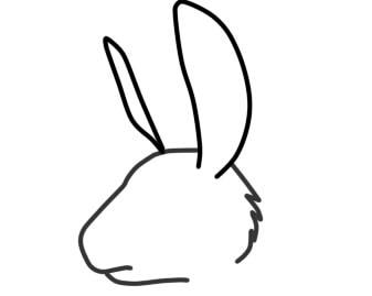 как нарисовать мордочку зайца