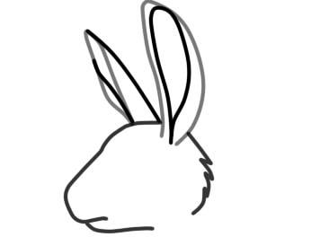 как нарисовать уши зайца