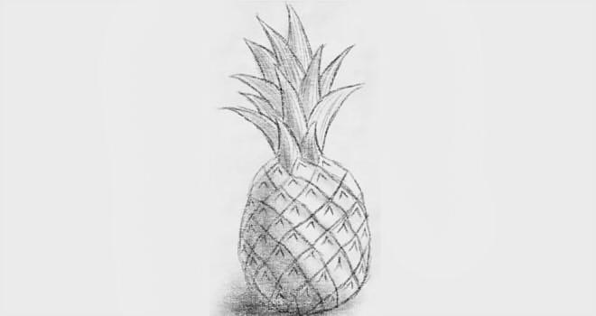 Сайты рисования поэтапно карандашом