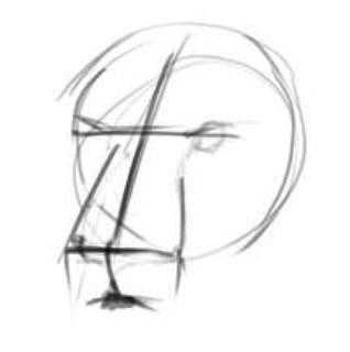 как нарисовать голову льва шаг 1