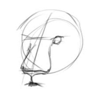 как нарисовать голову льва шаг 2
