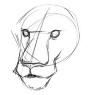 как нарисовать голову льва шаг 3