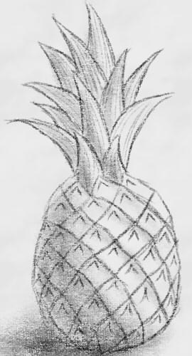 как нарисовать ананас шаг 5