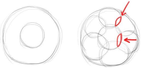 как нарисовать простую розу этап 1