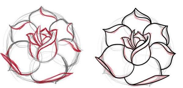 как нарисовать простую розу этап 3