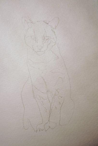 как нарисовать оцелота акварелью