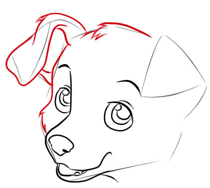 как нарисовать щенка поэтапно