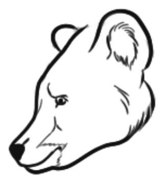 как нарисовать медведя шаг 3