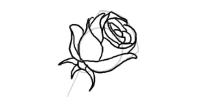 Як намалювати троянду легко