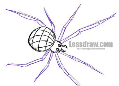 Как нарисовать паука карандашом