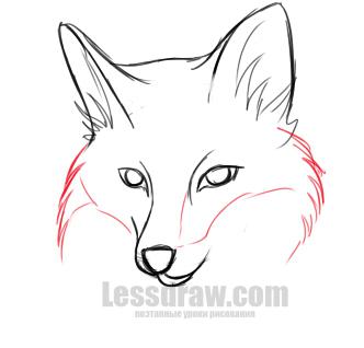 Как нарисовать лису поэтапно карандашом только морду