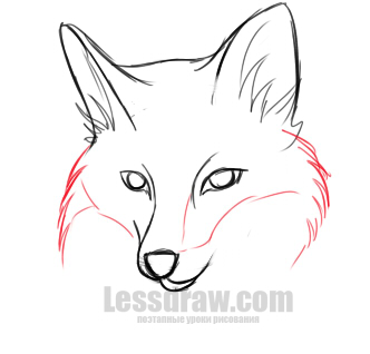 Мордочка лисы поэтапно 43