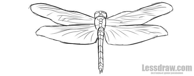 Как нарисовать стрекозу ребенку