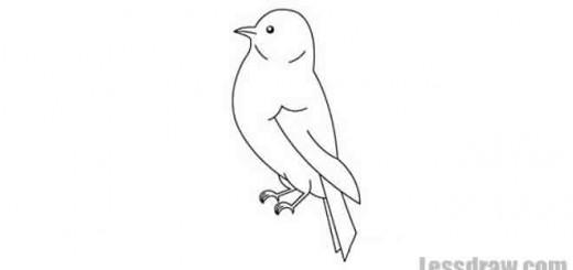 птичка карандашом легко