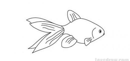 рыбка карандашом рисунок