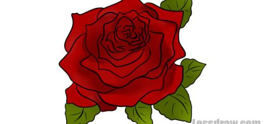 как нарисовать розу карандашом поэтапно
