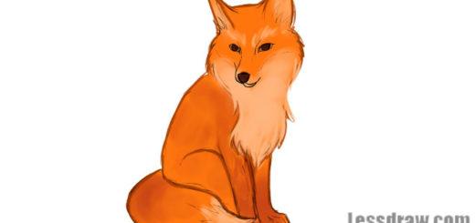 рисунки лисы