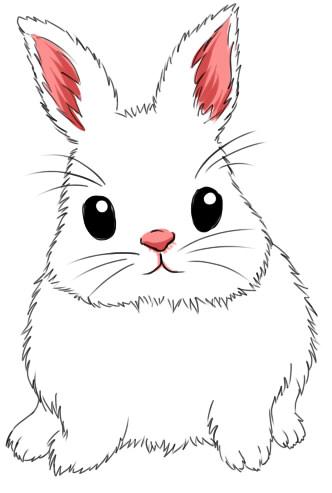 кролик нарисованный