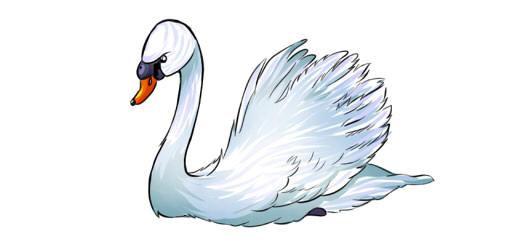 как нарисовать лебедя