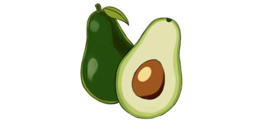 картинки нарисованного авокадо
